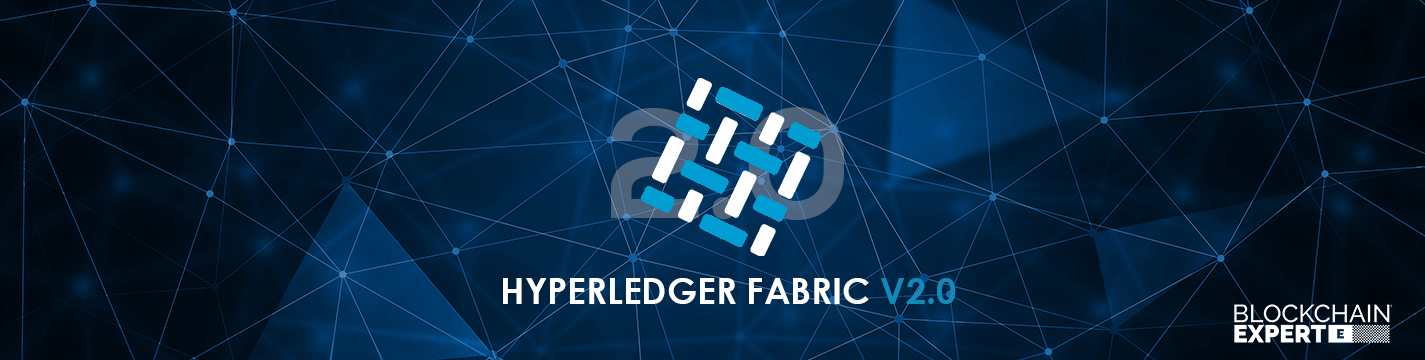hyperledger-fabric-v2.0.png