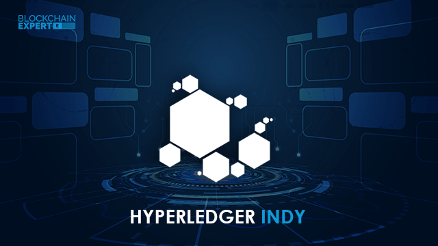 What is Hyperledger Indy